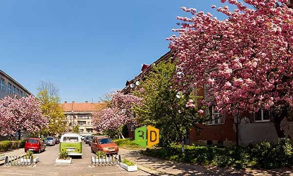 Весна в Ужгороде Цветение сакуры